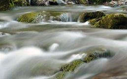 喀尔巴阡山脉的自然 库存照片