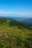 喀尔巴阡山脉的mns 免版税库存图片