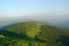 喀尔巴阡山脉的mns 库存照片