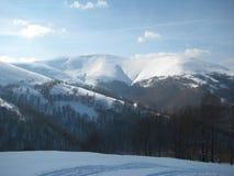 喀尔巴阡山脉在西方乌克兰,冬天 库存照片