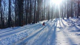 喀尔巴阡山脉的冬天 免版税库存图片