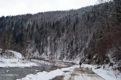 喀尔巴阡山脉的冬天 图库摄影