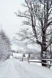 喀尔巴阡山脉的冬天 库存照片