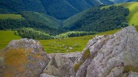 喀尔巴阡山脉的域森林山临近全景路 免版税库存图片