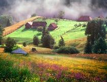 喀尔巴阡山脉的夏天 免版税库存图片