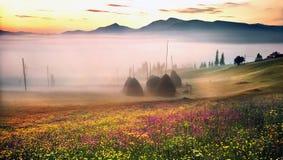 喀尔巴阡山脉的夏天 免版税库存照片