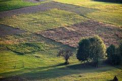 喀尔巴阡山脉的小山 免版税库存图片
