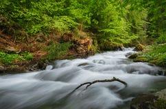 喀尔巴阡山脉的山顶视图 在瀑布Shipot附近的山河 免版税图库摄影