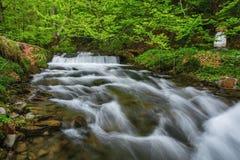 喀尔巴阡山脉的山顶视图 在瀑布Shipot附近的山河 免版税库存图片