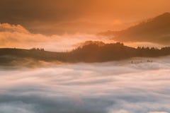 喀尔巴阡山脉的山顶视图 在薄雾盖的山在日出 免版税图库摄影