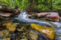喀尔巴阡山脉的山顶视图 山小河和绿草在银行 免版税库存图片