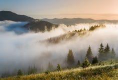 喀尔巴阡山脉的山顶视图 山的倾斜在雾的 免版税库存照片