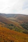 喀尔巴阡山脉的山顶视图 免版税库存图片