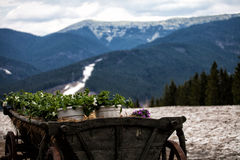 喀尔巴阡山脉的山顶视图 库存图片