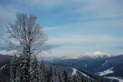 喀尔巴阡山脉的山 库存图片
