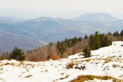 喀尔巴阡山脉的森林和小山 库存图片