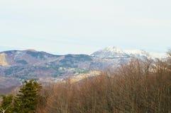 喀尔巴阡山脉的森林和山 图库摄影