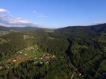 喀尔巴阡山脉的森林 图库摄影