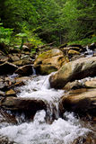 喀尔巴阡山脉的溪 免版税库存照片