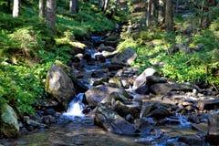 喀尔巴阡山脉的溪II 库存照片