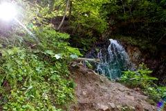 喀尔巴阡山脉的瀑布II 免版税库存图片