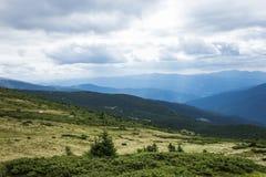 喀尔巴阡山脉的风景边缘 乌克兰 免版税库存照片