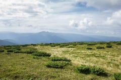 喀尔巴阡山脉的风景边缘 乌克兰 图库摄影
