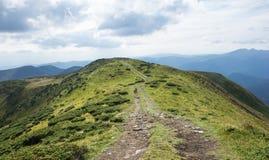 喀尔巴阡山脉的风景边缘 乌克兰 免版税库存图片