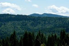 喀尔巴阡山脉的风景 库存图片