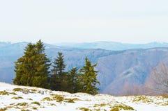 喀尔巴阡山脉的绝对 库存照片