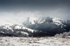 喀尔巴阡山脉 免版税图库摄影