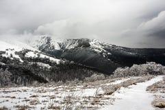 喀尔巴阡山脉 免版税库存图片