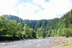 喀尔巴阡山脉 库存照片