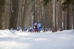 喀山,俄罗斯- 2018年3月:跑喀山滑雪马拉松的运动员滑雪者在冬天森林 免版税库存图片