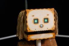 喀山,鞑靼斯坦共和国共和国,俄罗斯- 3月12 :机器人头在机器人`陈列`城市的商店2018年在喀山,俄罗斯 免版税库存照片