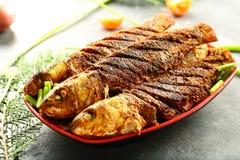 喀拉拉烹调,油煎的鱼用异乎寻常的香料 图库摄影
