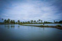 喀拉拉的回水 免版税图库摄影