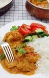 喀拉拉鸡咖喱垂直 库存图片