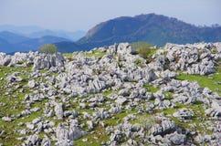喀斯特地形(四国石灰岩地区常见的地形) 免版税库存图片
