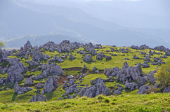 喀斯特地形(四国石灰岩地区常见的地形) 库存照片