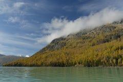喀纳斯湖在新疆中国 图库摄影