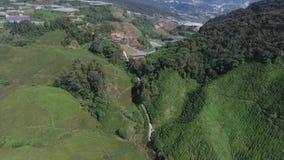 喀麦隆高地空中录影  股票视频
