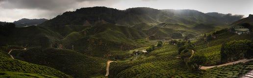 喀麦隆高地 免版税库存图片