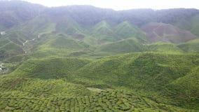 喀麦隆高地 免版税图库摄影