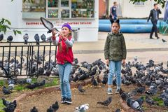 喂养在伊尔库次克街道上的俄国女孩鸽子  俄国 免版税库存照片