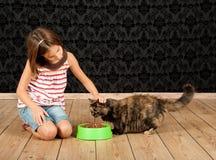 喂养猫的女孩 免版税库存照片