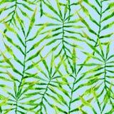 喂无缝夏威夷的模式 水彩棘手的棕榈 库存照片