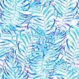 喂无缝夏威夷的模式 水彩被缠结的棕榈 库存例证