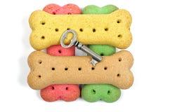 喂狗的硬饼干和银色钥匙 库存照片