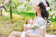 喂养一个婴孩的母亲在果树园 免版税库存图片
